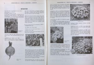 Prisliste fra Grimstadfrø AS 1956 71. årgang s. 6 og 7