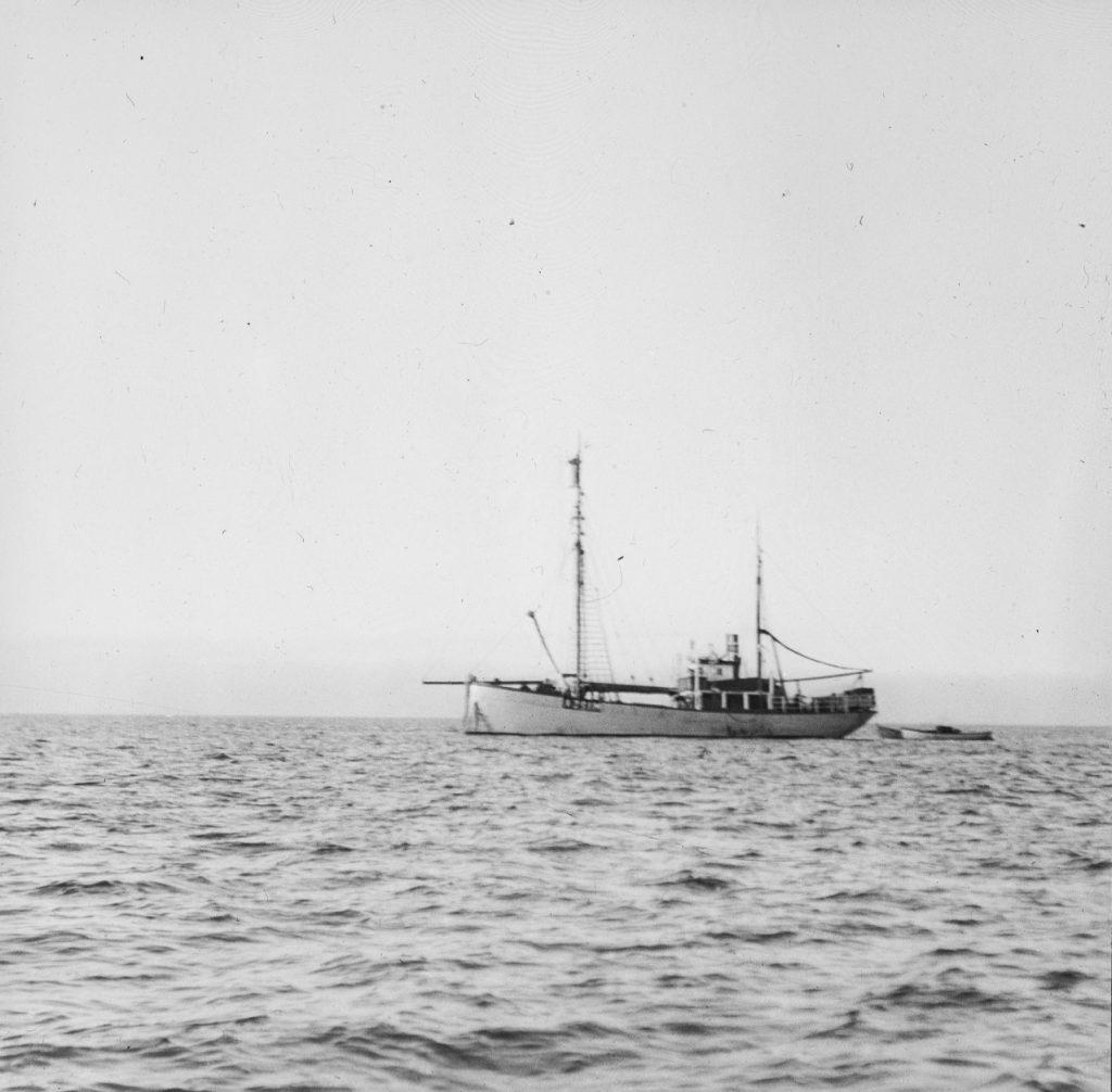 Fangstskuta M/S «Bratvaag» 1930. Foto: Trolig Adolf Sørensen