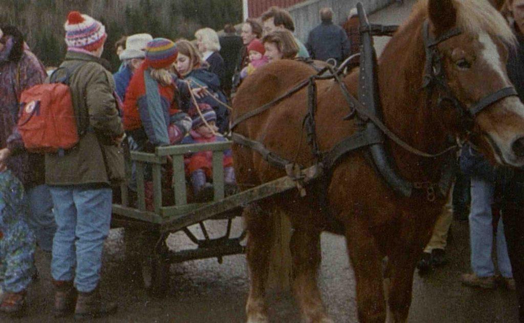 """Hestekjøring under """"Jul i fjøset"""" på Holt landbruksskole 11.12.1994"""