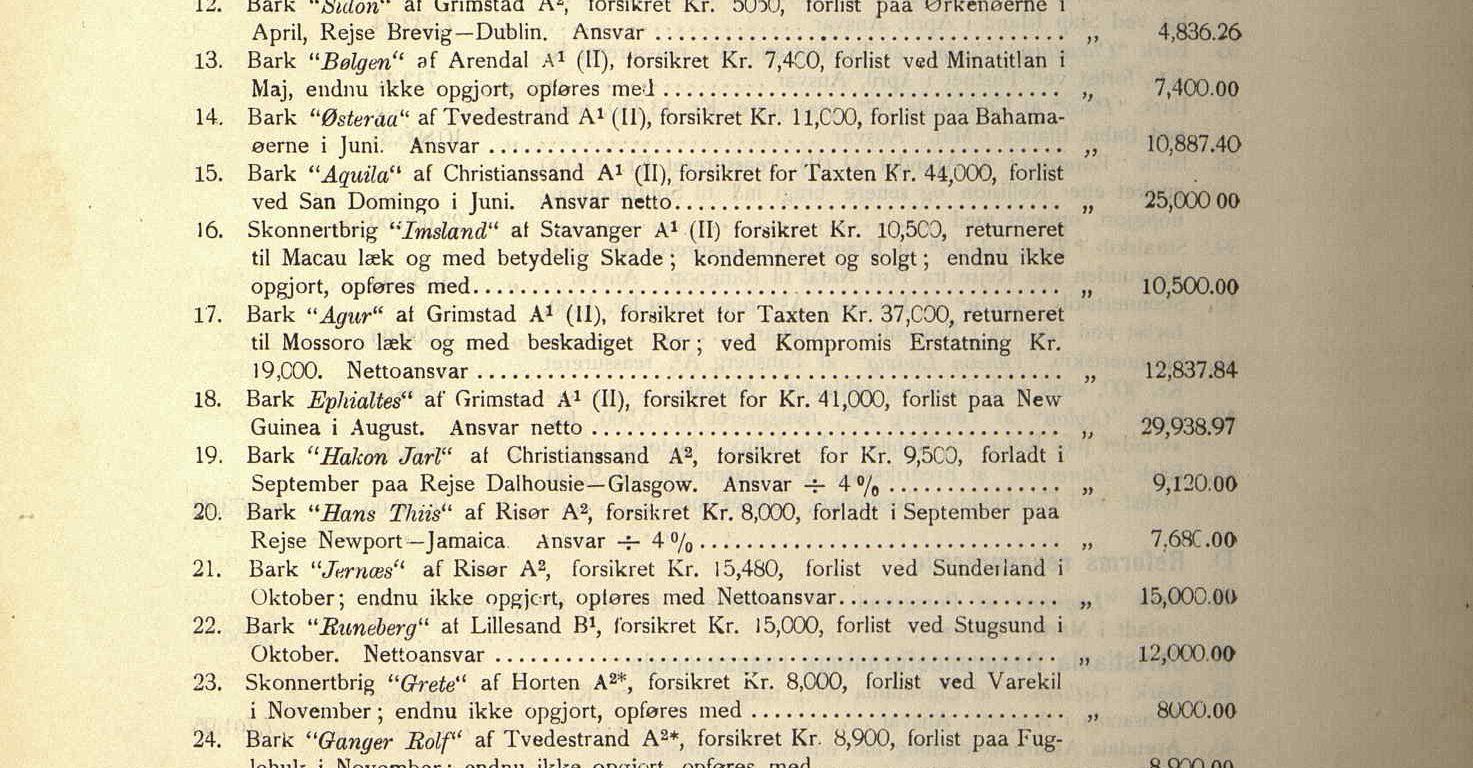 Årsrapport for Agders Gjensidige Assuranceforening 1894 s. 3