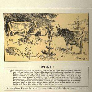 Dyrebeskyttelsens kalender 1932 mai